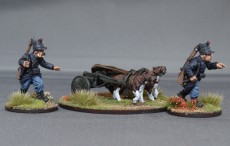 Belgian Line/Chasseurs a pied Regiment 2